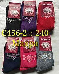 Шкарпетки жіночі зима термо махрові Ластівка розмір 37-41 12 шт в уп.
