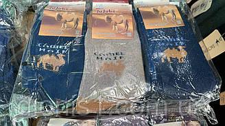 Шкарпетки чоловічі зима верблюжа шерсть Jujube розмір 36-41 12 шт в уп.