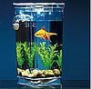 Маленький прямокутний акваріум самоочисний My Fun Fish, фото 6