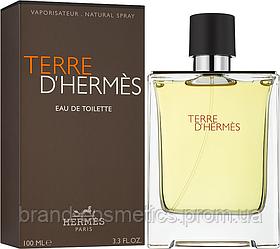 Мужская туалетная вода Hermes Terre d'Hermes 100 мл (Euro A-Plus)