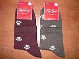 """Жіночі шкарпетки """"Добра Пара"""". Лапки. р. 23-25 (36 - 39). Бавовна. ., фото 6"""