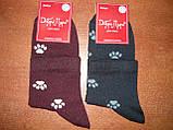 """Жіночі шкарпетки """"Добра Пара"""". Лапки. р. 23-25 (36 - 39). Бавовна. ., фото 4"""