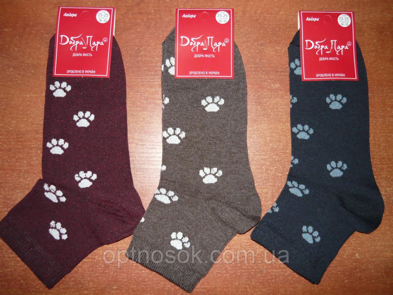 """Жіночі шкарпетки """"Добра Пара"""". Лапки. р. 23-25 (36 - 39). Бавовна. ."""