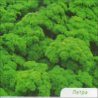 Семена петрушки Петра 50 г Бейо ( Bejo )