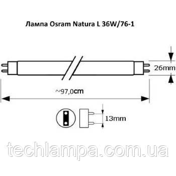 Лампа Osram Natura L 36W/76-1