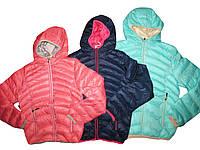 Куртка для девочек на синтепоне, размеры 8-лет, GRACE, арт. G 60332, фото 1