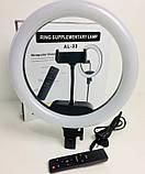 Кольцевая LED лампа AL-33 33см от 220V пульт, фото 5