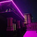 Светодиодный Гибкий Неон 2 х сторонний LED Флекс Неон 50 м Фиолетовый, фото 6
