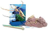 Скелет Птерозавр. Розкопки