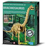 """Раскопки динозавра """"Брахиозавр"""""""