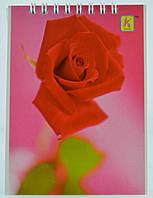 Блокнот А 6 картонная обложка на пружине 40 листов