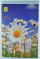 Блокнот А 6 картонная обложка на скрепке 32 листов