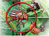 Инcектициды (средства борьбы с вредными насекомыми)