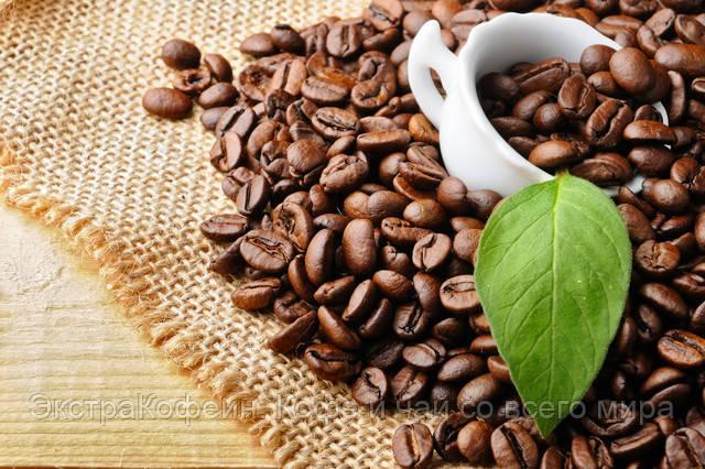 Кофейные зёрна скрывают поразительные свойства