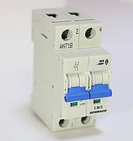 """Автоматический выключатель, хар-ка """"C"""", 2 пол, 10А, 4, 5кА Schrack"""