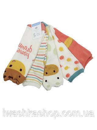 Плотные носки с подкладкой на 12 - 24 месяца, р. 19 - 22, Primark