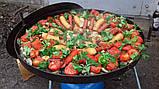 Мангал сковорода из диска бороны для пикника жарки (БЕЗ НОЖОК И РУЧЕК) 50 см. ДБ-002, фото 4