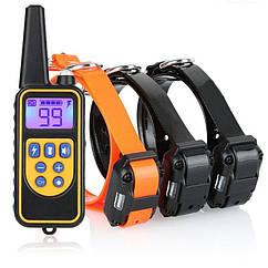 Электроошейник для собак дрессировочный Pet DTC-800 с 3-мя ошейниками для 3-х собак