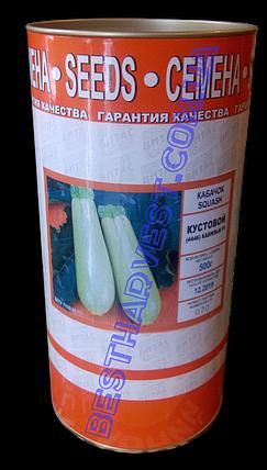 Семена кабачка «Кавилья F1 Кустовой (4446)» инкрустированные, 500 г, фото 2