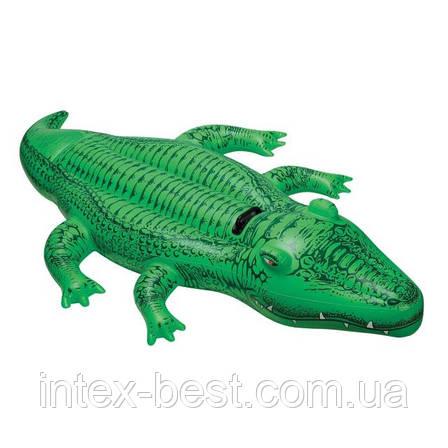 """Детская надувная игрушка """"Крокодил"""" Intex 58562 (203x114 см.), фото 2"""