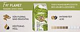 Зернова кава Lavazza Tierra Bio Organic for Planet 1кг, фото 2