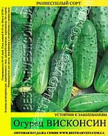 Семена огурца Висконсин 0,5кг