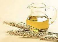 Польза сыродавленного  масла из зародышей пшеницы