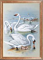 """Рисунок на ткани для вышивания бисером """"Лебеди на отливе """""""