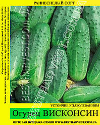 Семена огурца Висконсин 5 кг (мешок)