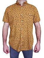 Рубашка с ласточками от Next (сток)
