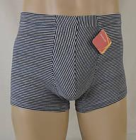 Мужские шорты (Полоска)