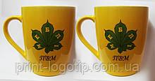 Заказать чашки с логотипом в Киеве