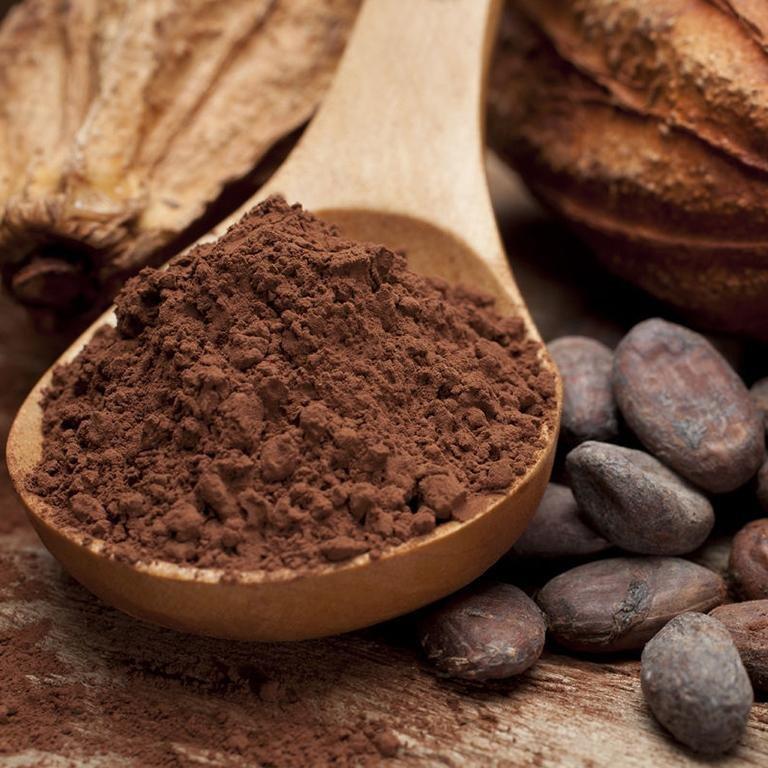 Алкалізований Какао порошок Преміум 500 г