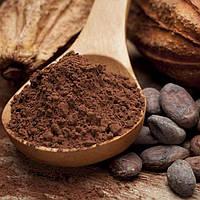 Алкалізований Какао порошок Преміум 500 г, фото 1