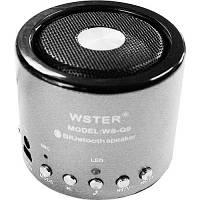 Портативная Bluetooth колонка WSTER WS-Q9 (цвета в ассортименте)  *1207