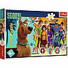 "Puzzles - ""160"" - Scooby Doo in action / Warner Scooby Doo - Scoob Movie"