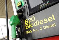 При переходе на биотопливо, у украинцев появится шанс экономить