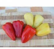 Семена перца сладкого Злата весом 100 грамм