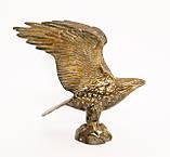 Старая скульптура, орел, латунь, Германия, фото 5