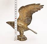 Старая скульптура, орел, латунь, Германия, фото 8