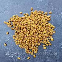 Кукурудза хрустка смажена солона Преміум (Іспанія) до пива (снек) 1 кг смаки:сир, барбекю, мед горчи, фото 3