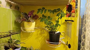 Подставка пристенная кованая для цветов  на 2 вазона, фото 2