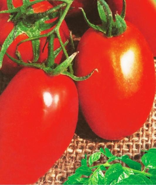Семена томатов Новинка Приднестровья