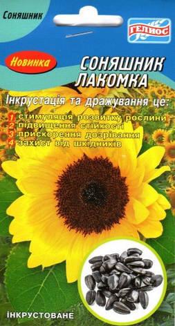 Насіння соняшника Лакомка 50 шт. Інк., фото 2