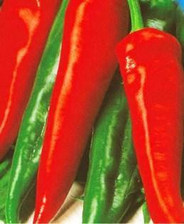Семена перца Украинский горький, фото 2