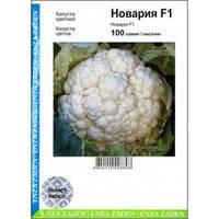 Семена Капуста цветная Новария F1, 100 семян Enza Zaden  Агропак