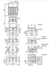Вертикальный многоступенчатый центробежный электронасос CDLF 4-14 FSWSR, фото 2