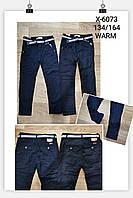 Котоновые брюки на флисе для мальчиков Goloxy 134-164p.p., фото 1