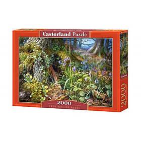 "Пазли Castorland 2000 ел.""В лісі"""