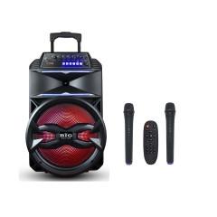 Автономная колонка BIG BIG310BAT USB/MP3/FM/BT/TWS + 2pcs VHF mic